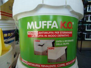 Casa - Combattere la muffa in casa ...